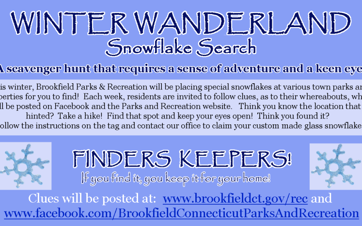 Picture of Winter Wanderland Snowflake Search